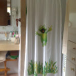Mampara de ducha de 1 puerta batiente DUSCHOLUX Plus Evolution Giro 1 puerta abatible photo review